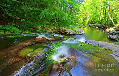 Photograph - Great Smoky Mountains National Park Scenic Waterfall Landscape by Charline Xia