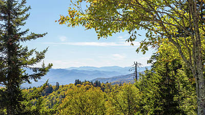 Photograph - Great Smoky Mountains by Penny Meyers
