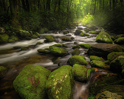 Photograph - Great Smoky Mountains Roaring Fork by Mike Koenig