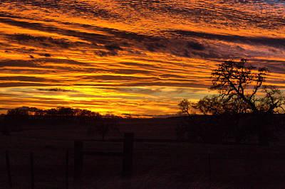 Photograph - Great Sunset by Joe Fernandez