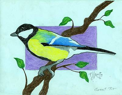 Color Pencil Drawing - Great Tit Bird by P J Lewis