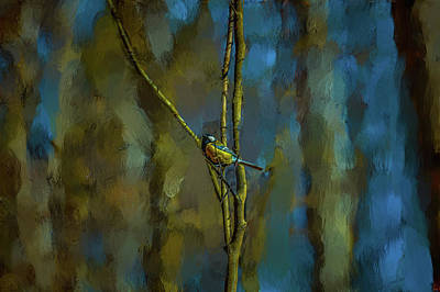 Photograph - Great Tit In Forest #h4 by Leif Sohlman