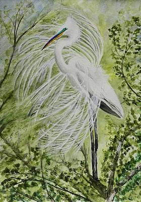 Ecological Painting - Great White Egret Mating Display 1 by Linda Brody