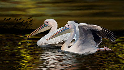Pelican Digital Art - Great White Pelicans by Thanh Thuy Nguyen
