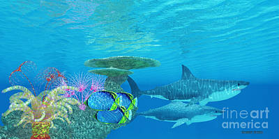 Great White Shark Reef Art Print by Corey Ford