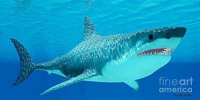 Gigantic Digital Art - Great White Shark Undersea by Corey Ford