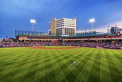 Photograph - Greater Nevada Field by Maria Coulson