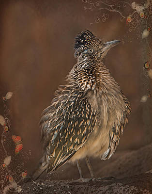 Photograph - Greater Roadrunner by Barbara Manis