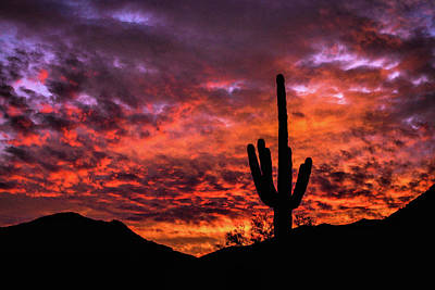 Photograph - Greater Scottsdale Arizona by Kyle Findley