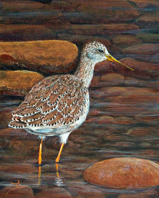 Sandpiper Painting - Greater Yellowlegs by Dee Carpenter