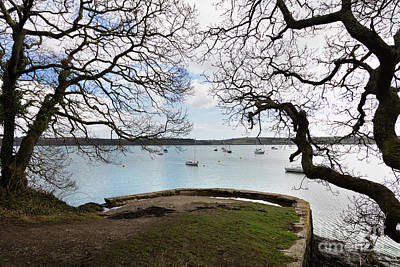Photograph - Greatwood Quay Mylor by Terri Waters