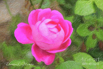 Digital Art - Greece Pink Rose by Donna L Munro