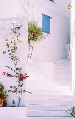 Photograph - Greek Stairway With Roses by Silvia Ganora