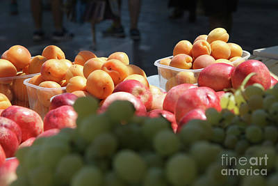 Monastiraki Photograph - Greek Summer Still Life  by Clay Cofer