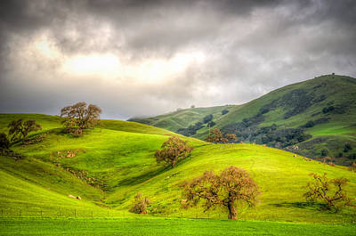 Photograph - Green Acres Of California by Spencer McDonald