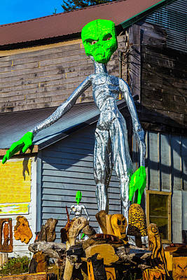 Aliens Photograph - Green Alien Space Creature by Garry Gay