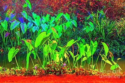 Photograph - Green And Blue by Rick Bragan