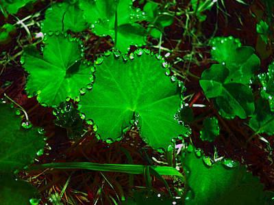 Green And Drops Art Print