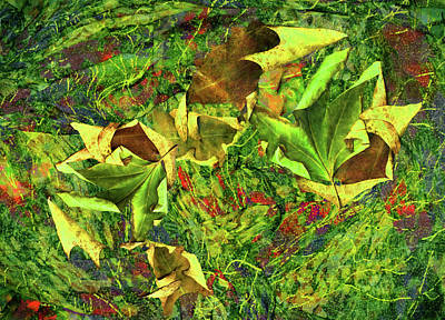 Photograph - Green And Golden Leaves by Nareeta Martin