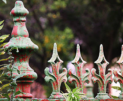 Photograph - Green And Red Iron Fence by Jeanne  Woods