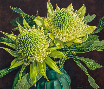 Australian Flowers Painting - Green And White Waratahs 1 by Fiona Craig