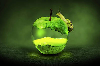Green Apple And Snail Art Print