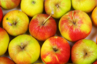 Apples Photograph - Green Apples by James BO  Insogna