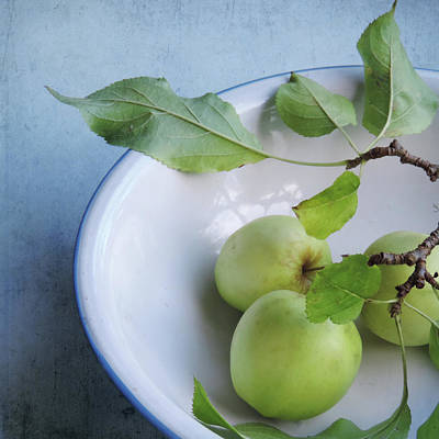 Photograph - Green Apples by Sally Banfill