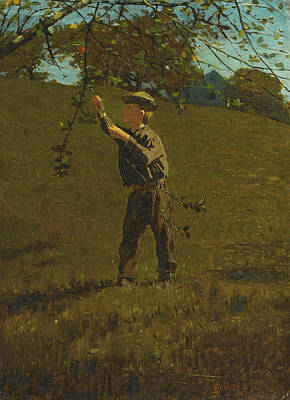 Winslow Homer Painting - Green Apples by Winslow Homer