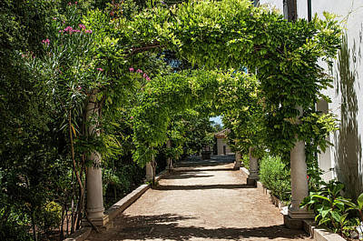 Photograph - Green Arch Way. Ronda. Spain by Jenny Rainbow