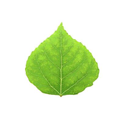 Digital Art - Green Aspen Leaf #11 by Agustin Goba