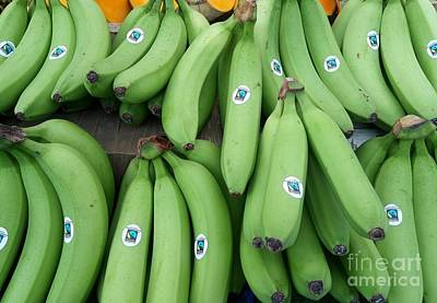 Photograph - Green Bananas - Catford Market by Mudiama Kammoh