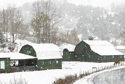 Photograph - Green Barn Farm by Benanne Stiens