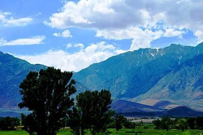 Photograph - Green Basin Hill View Landscape by Matt Harang