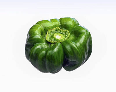 Photograph - Green Bell Pepper On White by Bill Swartwout