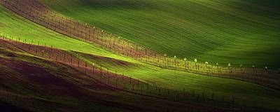 Moravia Photograph - Green Belts Of Fields by Jenny Rainbow