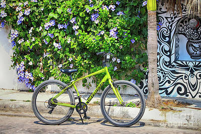 Photograph - Green Bike by Teresa Zieba