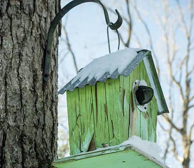 Photograph - Green Birdhouse In The Snow by Douglas Barnett