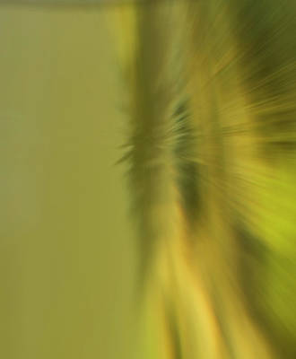 Photograph - Green Blur by Cliff Norton
