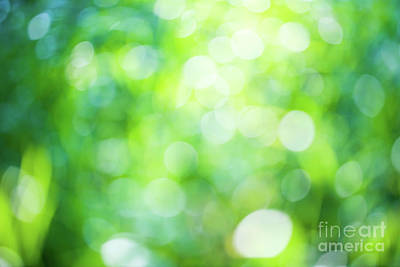 Photograph - Green Bokeh Natural Background by Anna Om