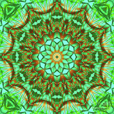 Photograph - Green Brown Kaleidoscope by Ludek Sagi Lukac