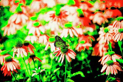 Digital Art - Green Butterfly by David Stasiak