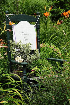 Photograph - Green Chair Planter by Allen Nice-Webb