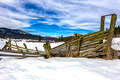 Photograph - Green Chute Idaho Landscapes By Kaylyn Franks by Omaste Witkowski