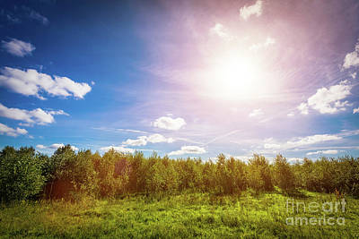 Photograph - Green Countryside Meadow And Forest Line. Sun Shining On Blue Sky by Michal Bednarek
