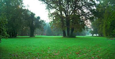 Photograph - Green Dawn In Autumn by Sun Travels