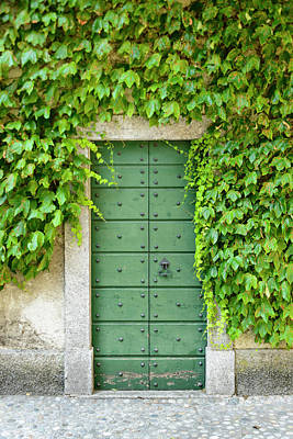 Photograph - Green Door And Ivy by Oscar Gutierrez