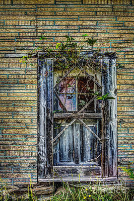 Photograph - Green Door by Roger Monahan