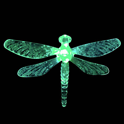 Digital Art - Green Dragonfly by Sarah Jean