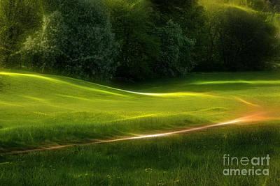 Photograph - Green Dream by Lutz Baar